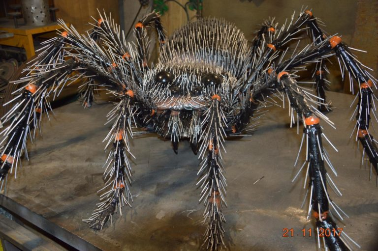 В Красноуфимске завёлся гигантский паук Федя V2Se5apZ73Q-768x511