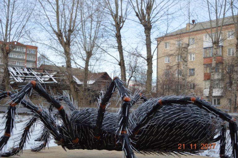 В Красноуфимске завёлся гигантский паук Федя W43fsokihPI-768x511